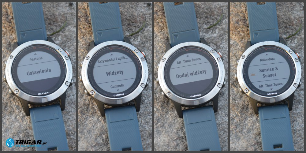 garmin fenix 5 widget