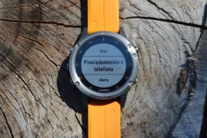 garmin connect mobile fenix world